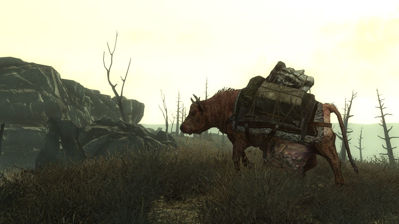 Fallout 3 Screenshot - 46